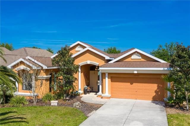 13408 Trailing Moss Drive, Dade City, FL 33525 (MLS #T3237533) :: Team Bohannon Keller Williams, Tampa Properties