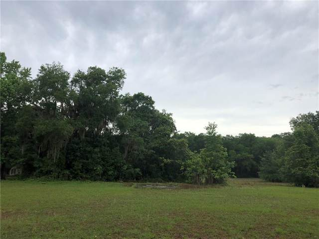 9891 S Florida Avenue, Floral City, FL 34436 (MLS #T3237860) :: Griffin Group