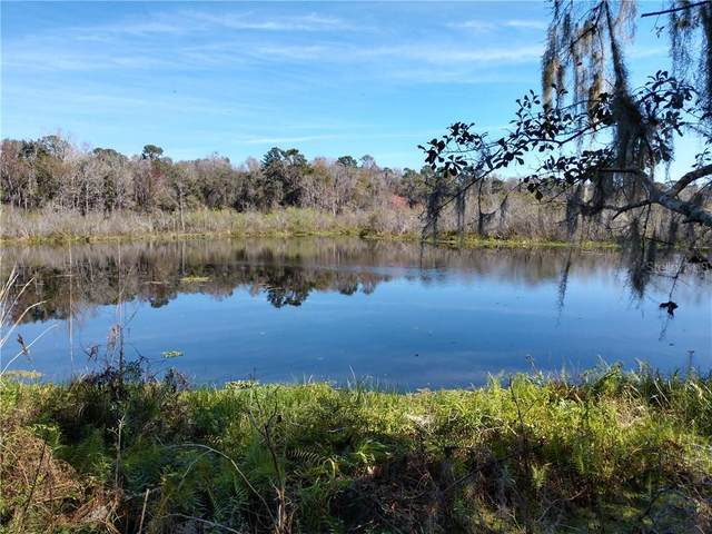 Townsend House Road, Dade City, FL 33525 (MLS #T3237960) :: Heart & Home Group