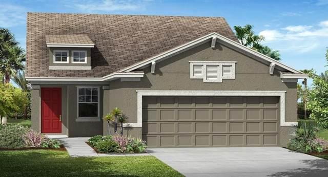 3425 Sagebrush Street, Harmony, FL 34773 (MLS #T3238030) :: RE/MAX Premier Properties