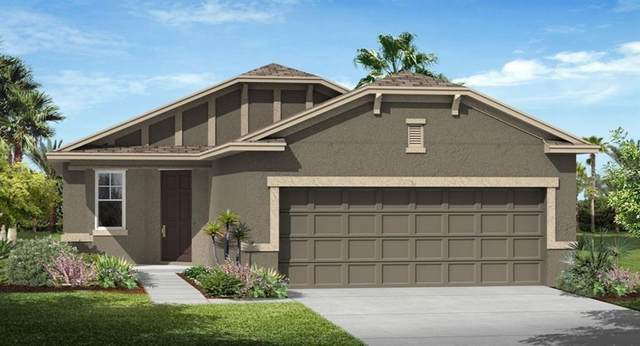 3421 Sagebrush Street, Harmony, FL 34773 (MLS #T3238037) :: Godwin Realty Group