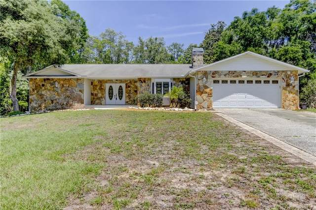 10951 Lakeview Drive, New Port Richey, FL 34654 (MLS #T3238235) :: Heckler Realty