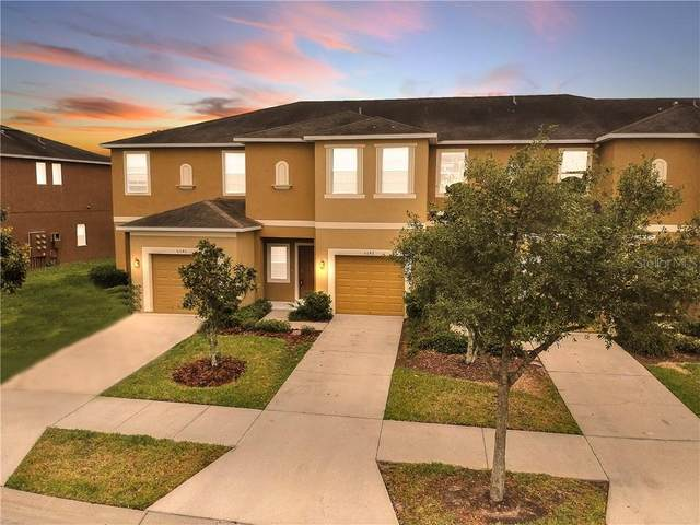 6642 Holly Heath Drive, Riverview, FL 33578 (MLS #T3238404) :: Griffin Group