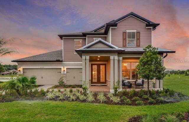 18709 Birchwood Groves Dr., Lutz, FL 33558 (MLS #T3238436) :: Team Bohannon Keller Williams, Tampa Properties