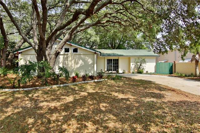 11701 Fife Avenue, Tampa, FL 33617 (MLS #T3238448) :: Griffin Group