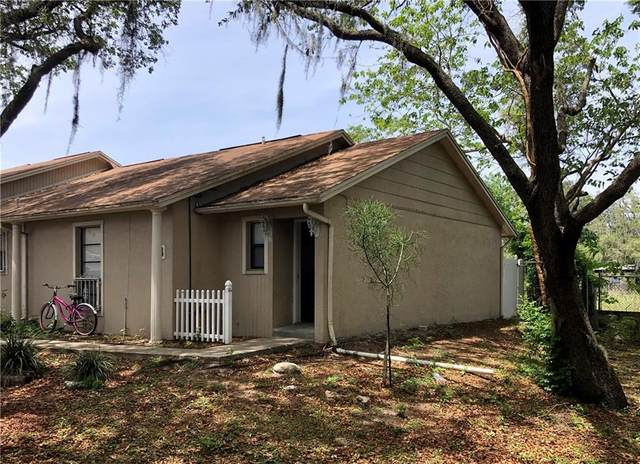 Address Not Published, Tampa, FL 33612 (MLS #T3238548) :: The Light Team