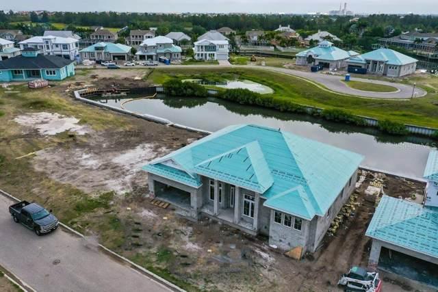 5709 Tybee Island Drive, Apollo Beach, FL 33572 (MLS #T3238765) :: Sarasota Gulf Coast Realtors