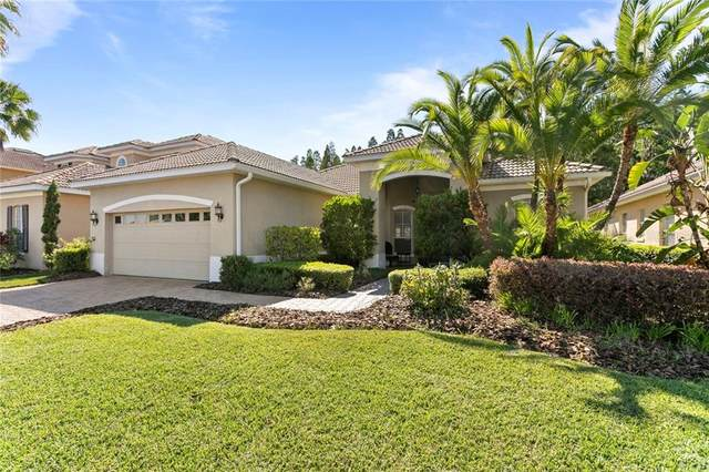 18006 Lanai Isle Drive, Tampa, FL 33647 (MLS #T3238799) :: Team Bohannon Keller Williams, Tampa Properties