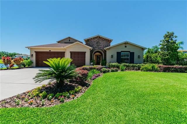 17824 Newcastle Field Drive, Lutz, FL 33559 (MLS #T3238846) :: Cartwright Realty