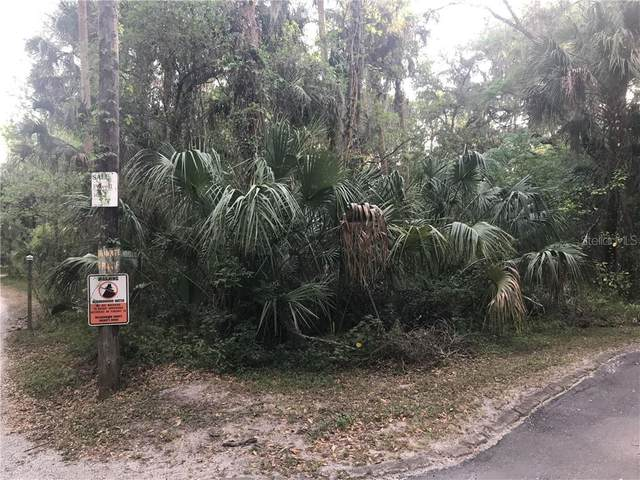 Coconut Cove Place, Valrico, FL 33596 (MLS #T3238946) :: Medway Realty