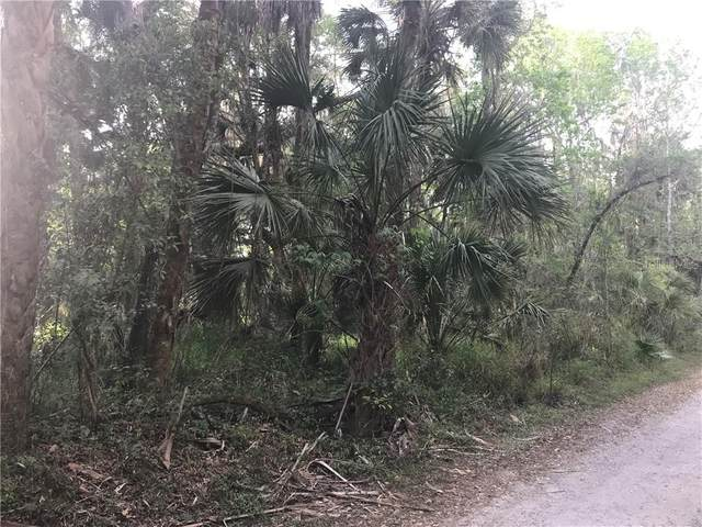 Coconut Cove Place, Valrico, FL 33596 (MLS #T3238947) :: The Duncan Duo Team