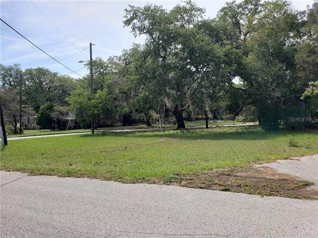8101 N 39TH Street, Tampa, FL 33604 (MLS #T3239202) :: Griffin Group