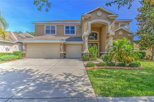 1326 Rushgrove Circle, Dover, FL 33527 (MLS #T3239435) :: Team Pepka