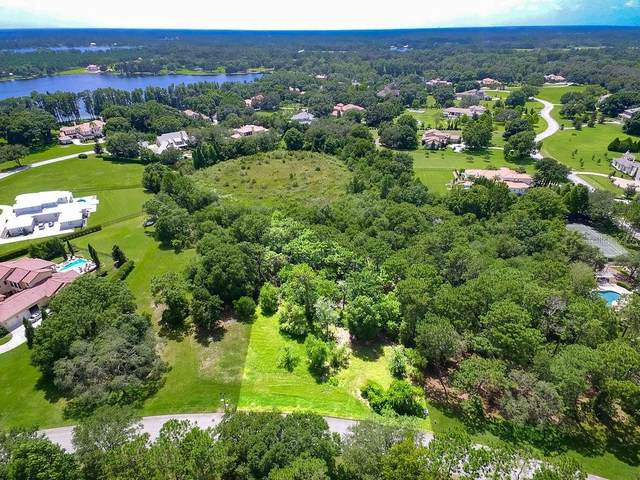 7705 Still Lakes Drive, Odessa, FL 33556 (MLS #T3239489) :: Rabell Realty Group