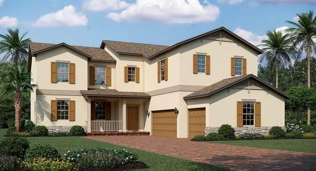 1819 Southern Red Oak Court, Ocoee, FL 34761 (MLS #T3239502) :: Team Bohannon Keller Williams, Tampa Properties