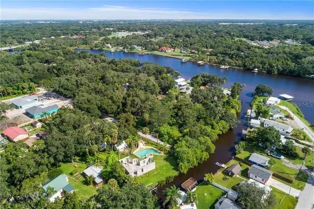 10825 Cedar Street, Riverview, FL 33569 (MLS #T3239527) :: Griffin Group