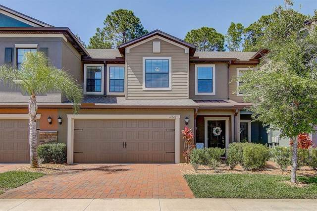 17229 Old Tobacco Road, Lutz, FL 33558 (MLS #T3239615) :: Griffin Group