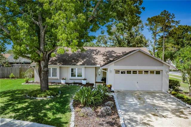 15708 Woodshed Place, Tampa, FL 33624 (MLS #T3239728) :: The Duncan Duo Team
