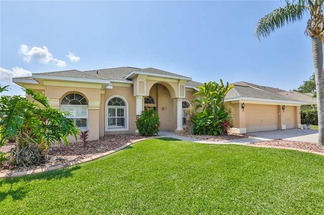 10111 Paddock Oaks Drive, Riverview, FL 33569 (MLS #T3239738) :: The Duncan Duo Team