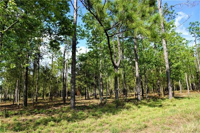 0 Richland Road Lots 11 & 10, Zephyrhills, FL 33540 (MLS #T3239822) :: The Duncan Duo Team