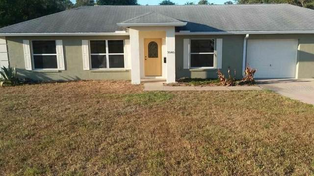 3585 E Theresa Lane, Inverness, FL 34452 (MLS #T3239827) :: Griffin Group