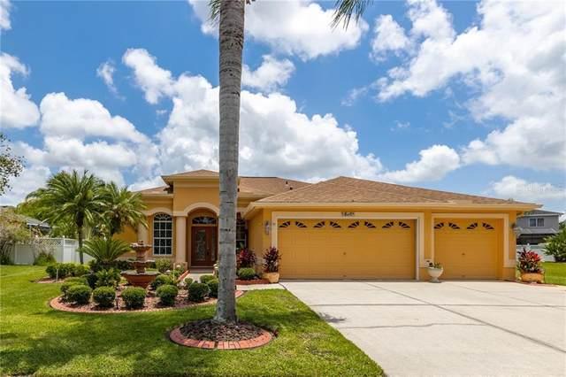 16461 Turnbury Oak Drive, Odessa, FL 33556 (MLS #T3239931) :: Premier Home Experts