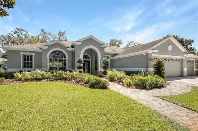 15236 Kestrelrise Drive, Lithia, FL 33547 (MLS #T3240504) :: EXIT King Realty