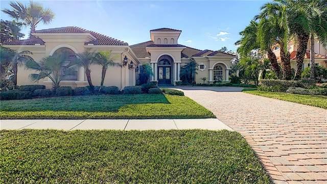 8450 Dunham Station Drive, Tampa, FL 33647 (MLS #T3240676) :: KELLER WILLIAMS ELITE PARTNERS IV REALTY