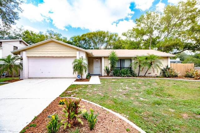 4918 Melrow Court, Tampa, FL 33624 (MLS #T3240724) :: The Duncan Duo Team