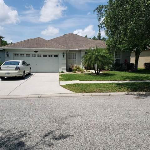 10822 Breaking Rocks Drive, Tampa, FL 33647 (MLS #T3240782) :: Bustamante Real Estate