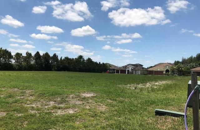 7256 Heather Sound Loop, Wesley Chapel, FL 33545 (MLS #T3241017) :: The Duncan Duo Team