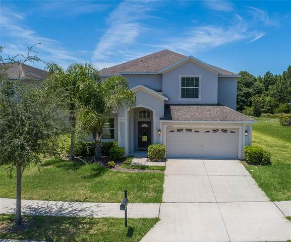 20508 Carolina Cherry Court, Tampa, FL 33647 (MLS #T3241150) :: Cartwright Realty