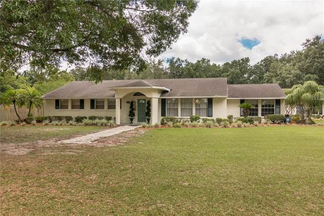 14639 Sydney Road, Dover, FL 33527 (MLS #T3241203) :: Griffin Group