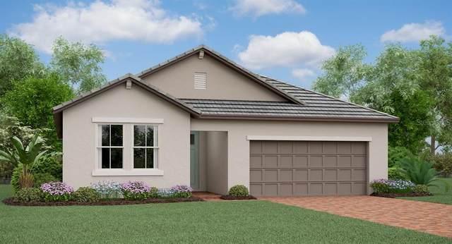 31810 Cabana Rye Avenue, San Antonio, FL 33576 (MLS #T3241464) :: Burwell Real Estate