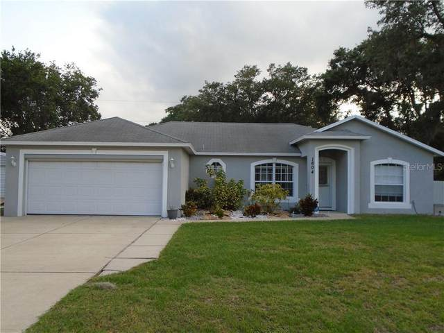 1604 Sabal Palm Drive, Edgewater, FL 32132 (MLS #T3241581) :: Florida Life Real Estate Group