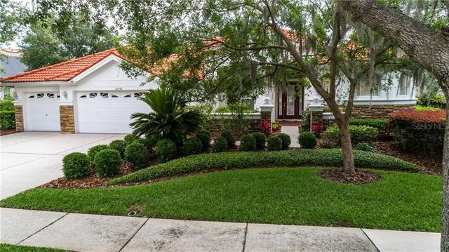 10242 Estuary Drive, Tampa, FL 33647 (MLS #T3241615) :: Team Bohannon Keller Williams, Tampa Properties