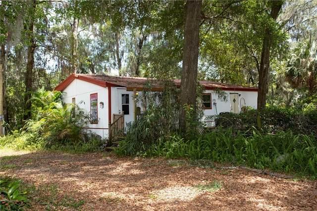 7337 Turkey Creek Road, Plant City, FL 33567 (MLS #T3241696) :: EXIT King Realty