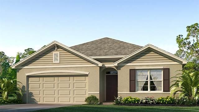 16471 Little Garden Drive, Wimauma, FL 33598 (MLS #T3241726) :: Team Bohannon Keller Williams, Tampa Properties