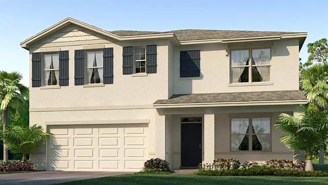 16467 Little Garden Drive, Wimauma, FL 33598 (MLS #T3241755) :: Team Bohannon Keller Williams, Tampa Properties
