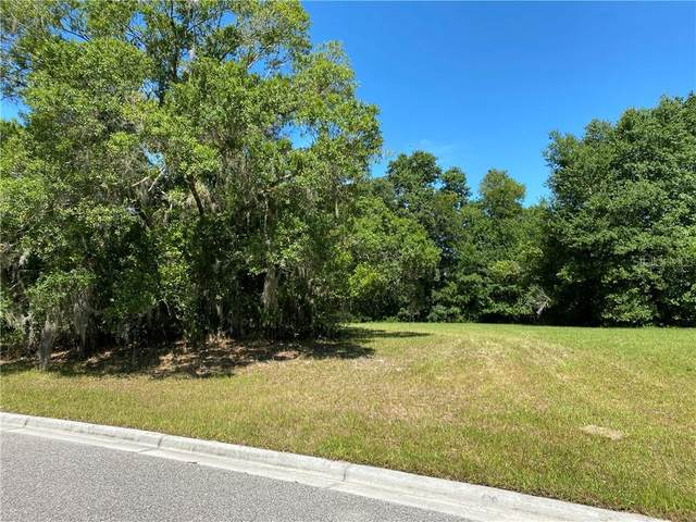 17044 Comunidad De Avila, Lutz, FL 33548 (MLS #T3241897) :: Bustamante Real Estate