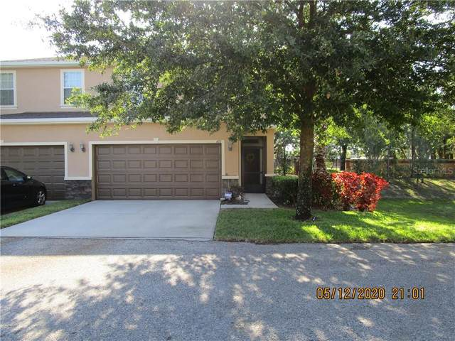 8621 Andalucia Field Lane, Temple Terrace, FL 33637 (MLS #T3241919) :: Team Borham at Keller Williams Realty