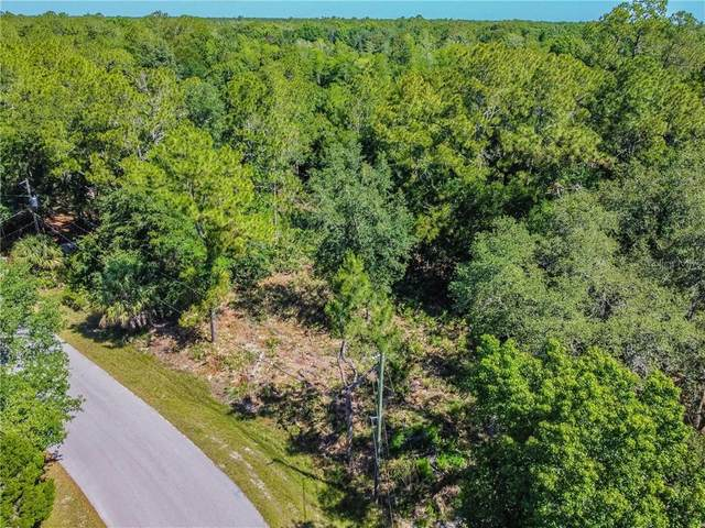Quail Run Drive, Wesley Chapel, FL 33544 (MLS #T3241934) :: Mark and Joni Coulter | Better Homes and Gardens
