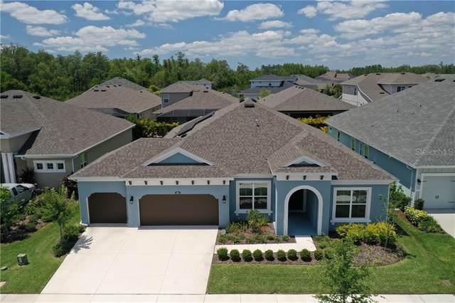 16711 Courtyard Loop, Land O Lakes, FL 34638 (MLS #T3242064) :: Team Bohannon Keller Williams, Tampa Properties