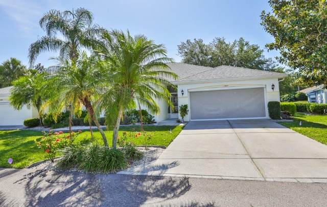 1004 Otter Mill Way, Sun City Center, FL 33573 (MLS #T3242066) :: The Figueroa Team