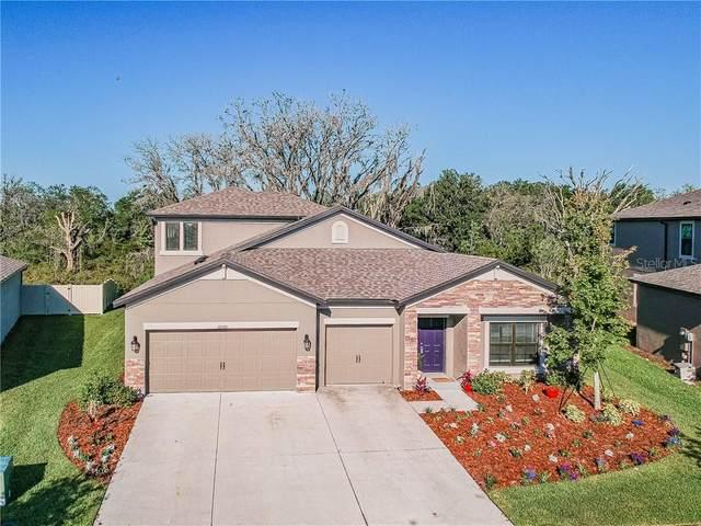 8060 Roma Dune Drive, Wesley Chapel, FL 33545 (MLS #T3242154) :: Team Bohannon Keller Williams, Tampa Properties