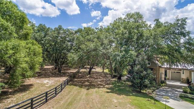 10427 Oak Canopy Lot 98 Junction, Thonotosassa, FL 33592 (MLS #T3242172) :: The Duncan Duo Team