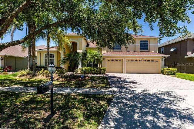 18108 Diamond Cove Court, Tampa, FL 33647 (MLS #T3242206) :: Bustamante Real Estate