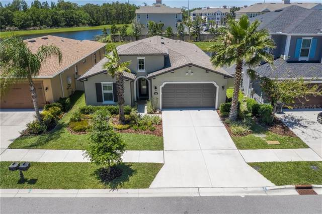 17908 Woodland View Drive, Lutz, FL 33548 (MLS #T3242290) :: Rabell Realty Group