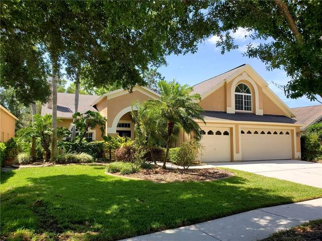 10209 Thicket Point Way, Tampa, FL 33647 (MLS #T3242292) :: Team Bohannon Keller Williams, Tampa Properties