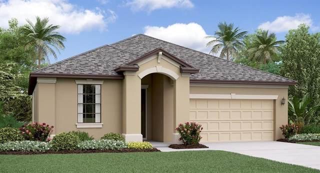 24964 Lambrusco Loop, Lutz, FL 33559 (MLS #T3242343) :: Team Borham at Keller Williams Realty